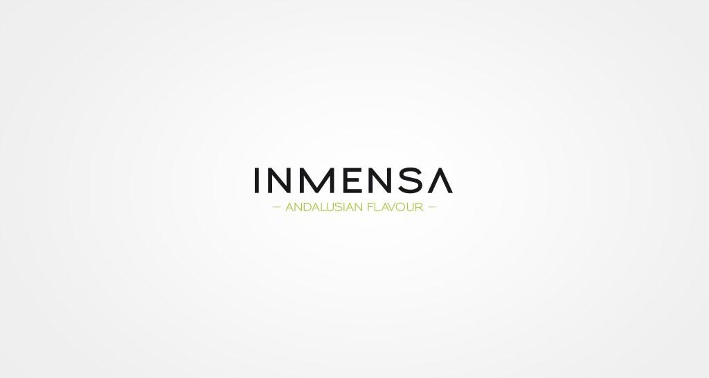 Proyecto integral de comunicacion INMENSA